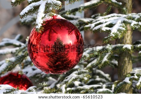 Red Bauble on Christmas Tree with Reflection