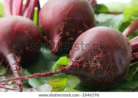 Red beet on green leaves.