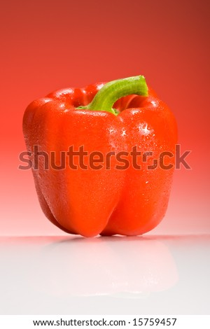 red bell pepper lit with red gradient lighting with water droplets