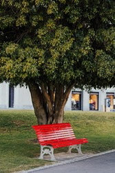 Red bench on neat and clean pedestrian sidewalk in Italy. Red bench near green grande tree.