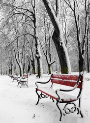 Red benches in a park covered with snow