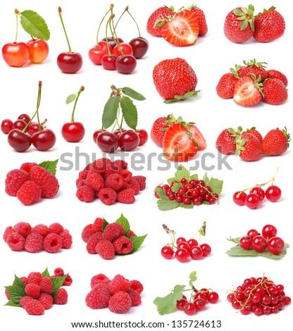 Red berries #135724613