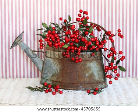 red berries inside old weathered watering can
