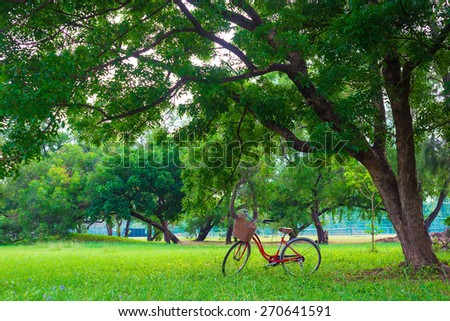 Red bicycle on green grass under Big tree - Shutterstock ID 270641591