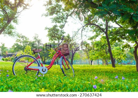 Red bicycle on green grass under big tree with sun light - Shutterstock ID 270637424