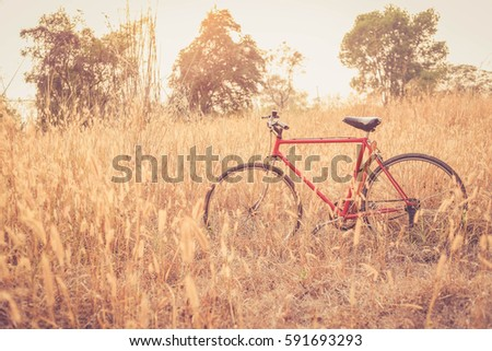 red bicycle with sunset background