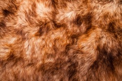 Red Brown Fur. Wolf, Fox, Bear Natural Hair. Animal Wildlife Concept and Idea for Background, Textures and Wallpaper. Close up Full Frame.