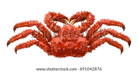 Red brown king crab isolated on white background as package design element #691042876