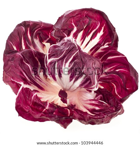 Red Cabbage Radicchio Rosso isolated on white - stock photo