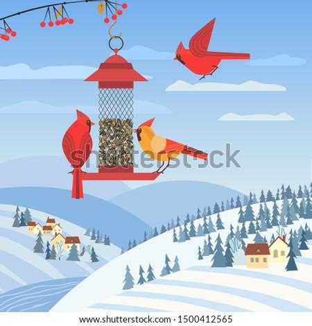 Red cardinal birds on feeder flat poster. Birdfeeding near winter rural community. Small bird of backyard minimal cartoon design. Birds feeding by sunflower seeds. Birdwatching background illustration