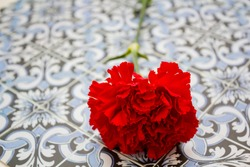 Red carnation on portuguese tiles. Portuguese Revolution and April 25 concept