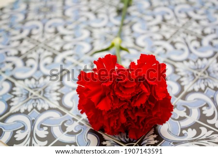 Red carnation on portuguese tiles. Portuguese Revolution and April 25 concept Foto stock ©