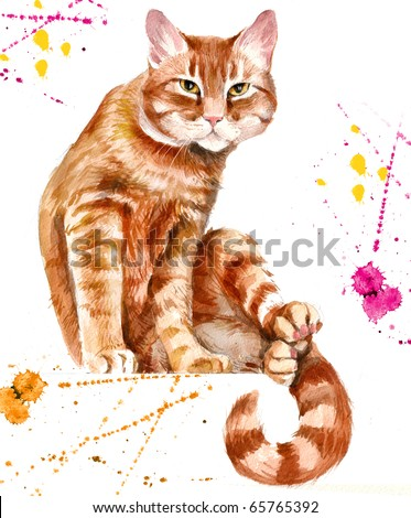 red cat Hand-painted images of the red cat isolated on a white background