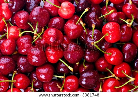 Red cherries, with water droplets.