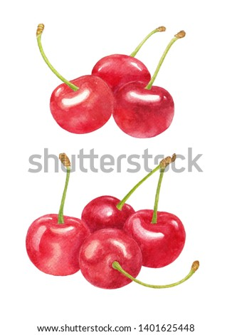 Red cherry watercolor painting set on white background.