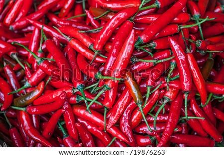 red chili  #719876263