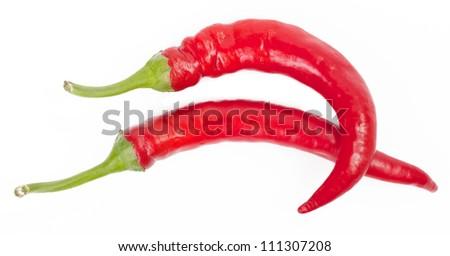 red chili on white background - stock photo
