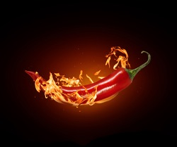 Red chili pepper close-up in a burning flame on a black