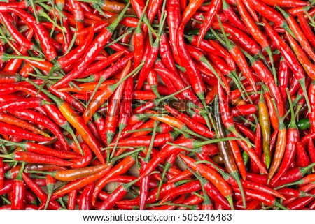 red chilli background #505246483