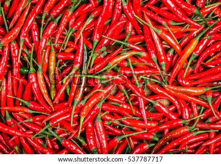 red chilli background #537787717