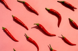 Red chilli peppers pattern on pink background. Top view. Hot pepper flat lay. Chili wallpaper