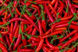 Red Chillies Background,Selective focus.Thai chillies.Organic ingredient thai food.