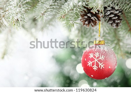 Red Christmas ball hanging on frosty fir tree.
