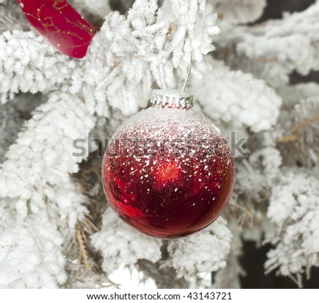 Red Christmas ball in a white Christmas tree