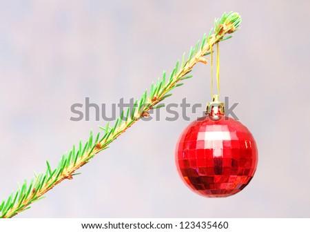 Red christmas ball on a branch of christmas tree