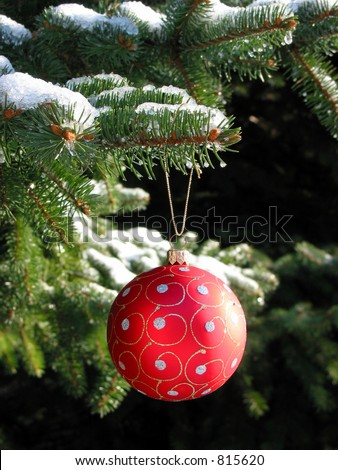 Red Christmas ball on snow covered fir tree