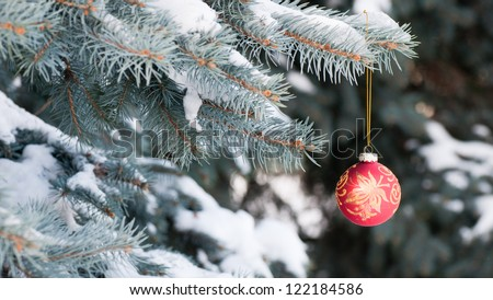 Red Christmas ball with gold pattern on blue spruce