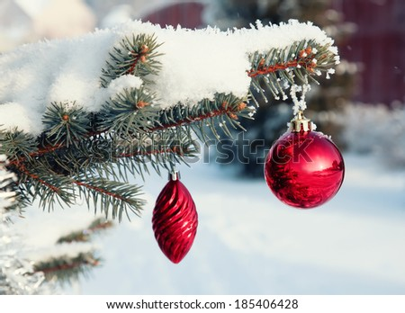 Red Christmas balls on a snow-covered tree branch