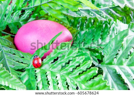 Red color Easter egg lying in green leafs and small lady bug near it #605678624