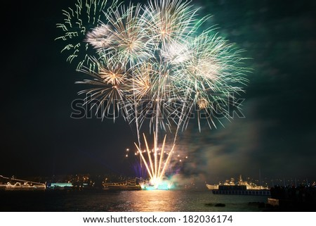 Red colorful fireworks on the black sky background