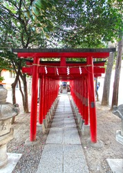 Red coloured torii gates of the Hanazono Shrine in the Shinjuku district of Tokyo. It is an inari shrine. Torii gates are traditional Japanese gates found at the entrance or inside Shinto shrines.