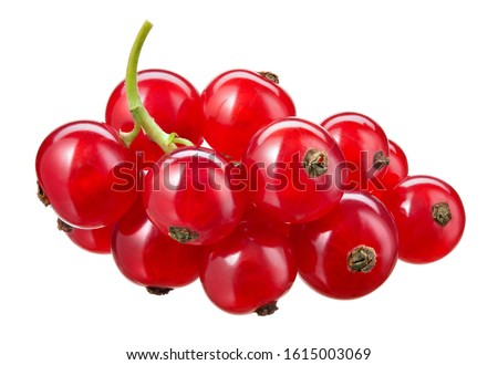 Red currant isolated. Currant red on white background. Clipping path. Currant red isolated. Clipping path. Currant on branch. Foto stock ©