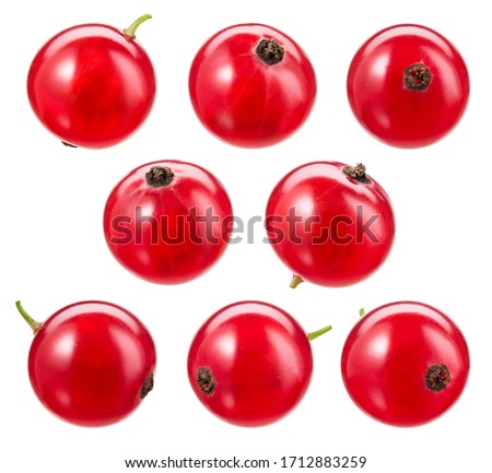 Red currant isolated. Currant red on white background. Currant red isolated. Currants on white.  With clipping path. Foto stock ©