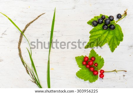 Red currants and black currants with grass on old wooden table