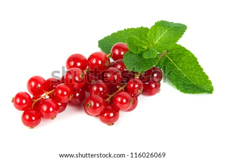 Red currants and green leaves mint