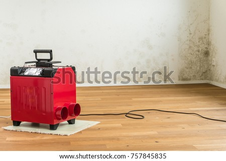 red dehumidifier in an empty apartment with a toxic mold and mildew problem