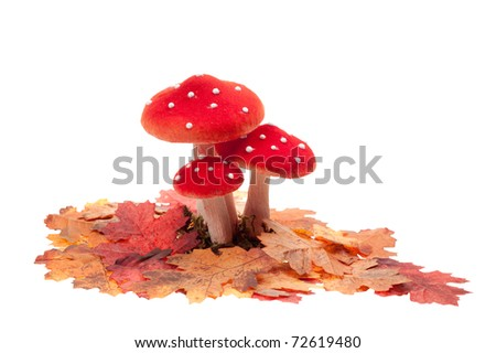 red dotted decoration mushrooms with leaves  isolated on a white background