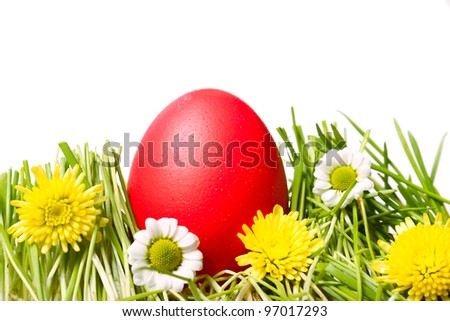 Red Easter egg on green grass. Image isolated on white background