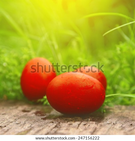 Red Easter Eggs in green grass. Happy Easter, Christian religious holiday.