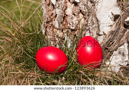 Red Easter eggs in the garden near birch log