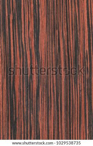 Red Ebony Veneer #1029538735