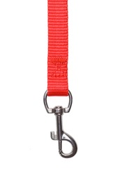 Red Fabric Dog leash Hanging Down Isolated on White Background.