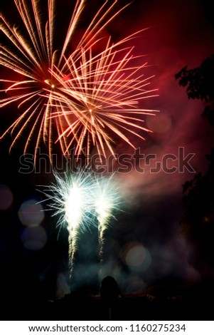 Red firework. Amazing fireworks, fireworks 2019, fireworks background, fireworks event, Celebration in the town. #1160275234