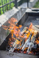 Red flames. Cook over an open fire. Burning logs. Bonfire flame. Barbecue fire. The heat of the fire. Dancing flame.