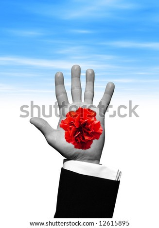Red Flower in hand