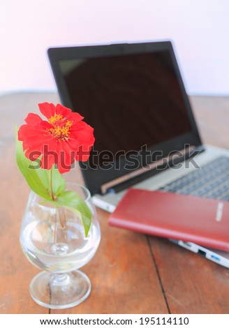 red flower in vase and book and laptop on desk